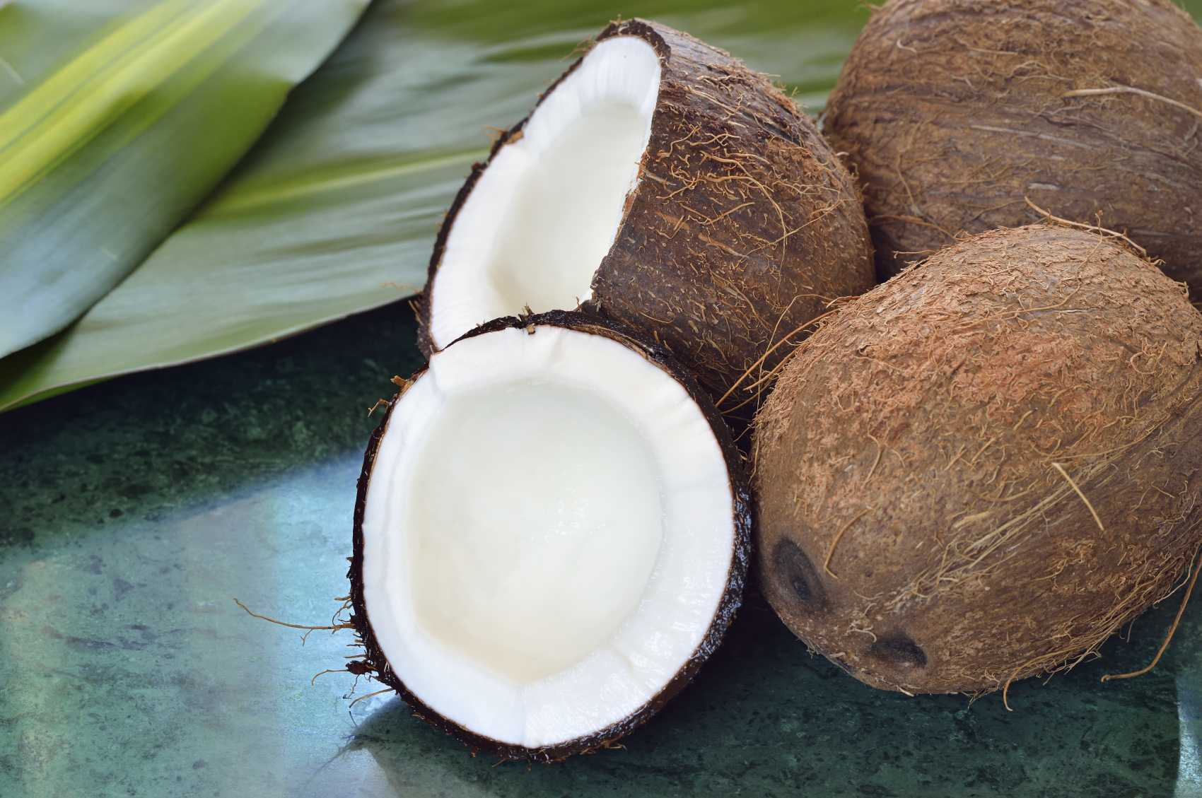 Coconut Fresh